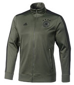 dfb-trainingsanzug